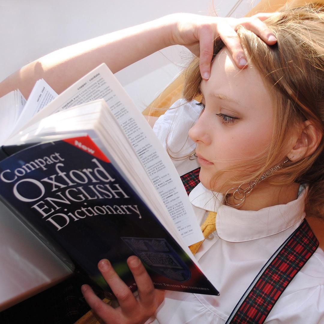 Cudzí jazyk ako (jediný) základ odbornosti?