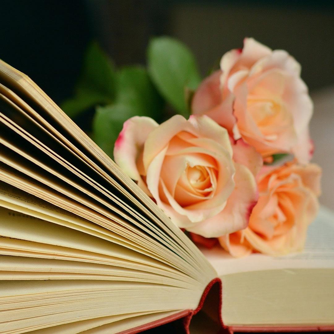 Spríjemnite si marec v spoločnosti knihy. Toto sú najpredávanejší slovenskí autori